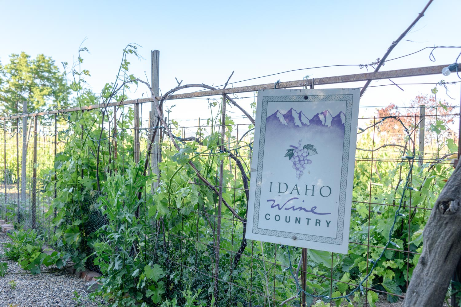 Sign at Sandstone Vineyards, Idaho Wine Country