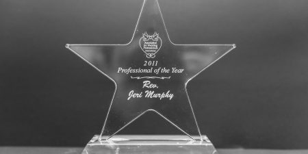 2011 Professional of the Year