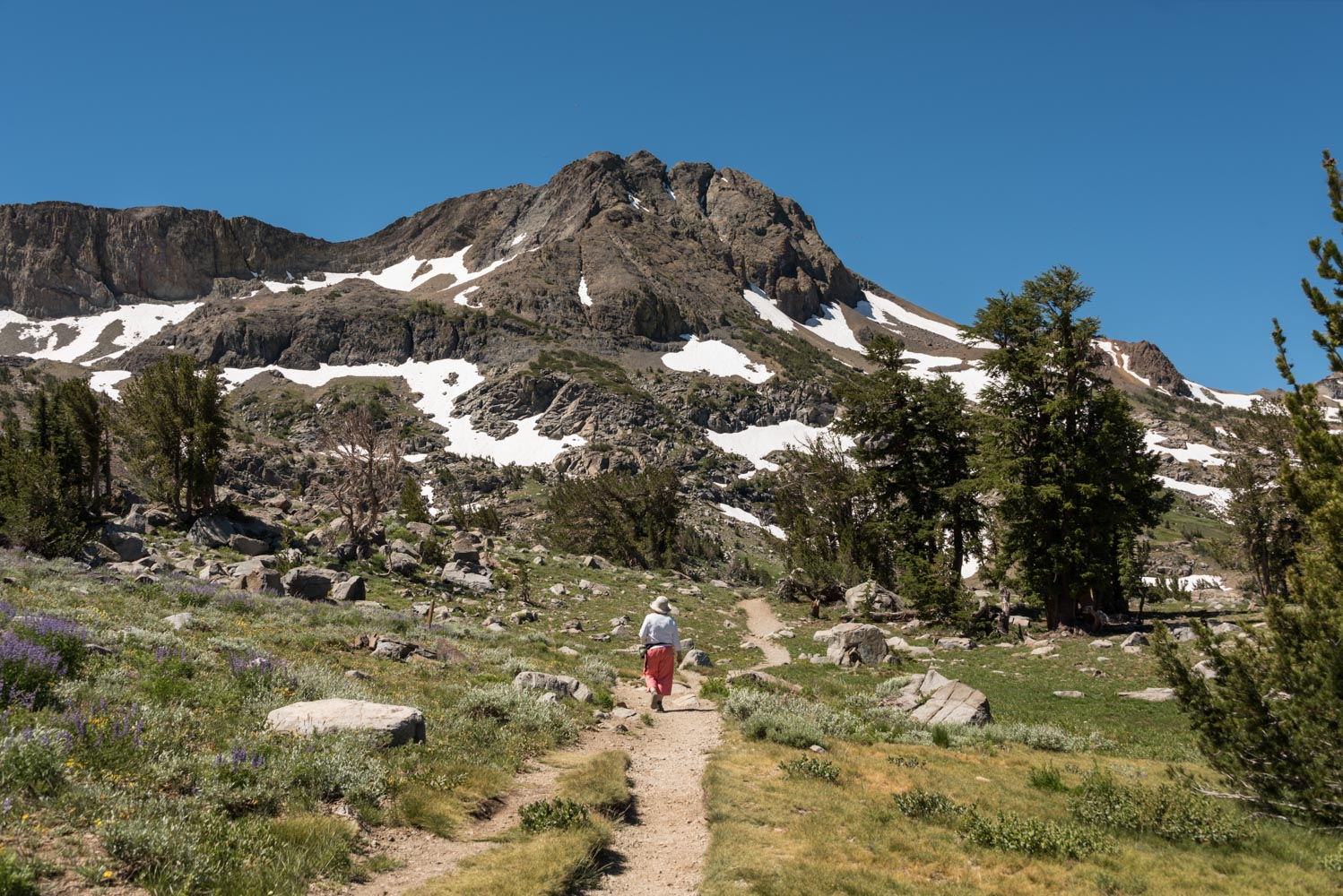 Landscape image of mountain trail leading to snow-covered mountain, at Carson Pass, California.