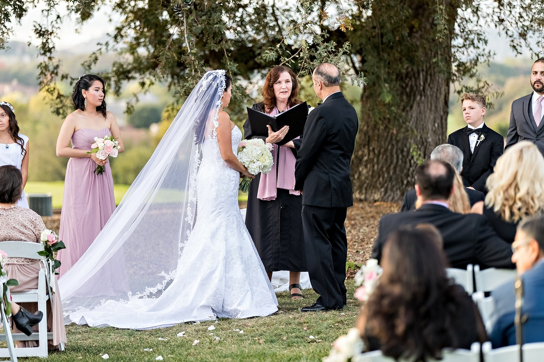 Image, taken by Siegel's Portrait Design, of bride and groom standing under oak tree listening to officiant performing wedding ceremony, with seated guests listening in the foreground.