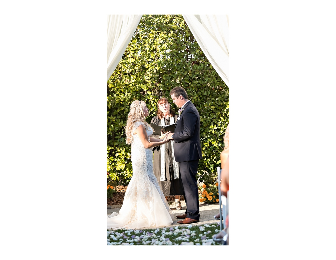 Photo by Siegel's Portrait Design showing bride and groom standing under draped arch and holding hands with officiant in background performing wedding ceremony.